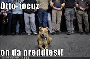 Otto-focuz  on da preddiest!