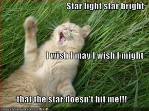 Star light star bright I wish I may I wish I might that the star doesn't hit me!!!