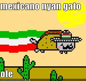 mexicano nyan gato  ole