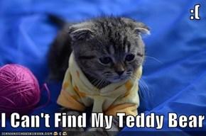:(  I Can't Find My Teddy Bear