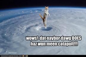 wows!  dat naybor dawg DOES haz wun meen catapolt!!!