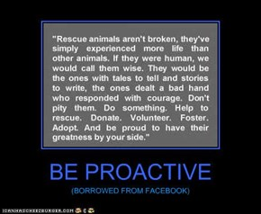 BE PROACTIVE