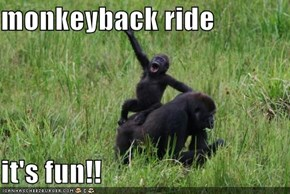 monkeyback ride  it's fun!!