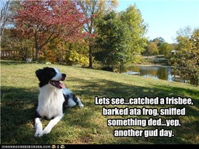 Lets see...catched a frisbee, barked ata frog, sniffed something ded...yep, anudder gud day.
