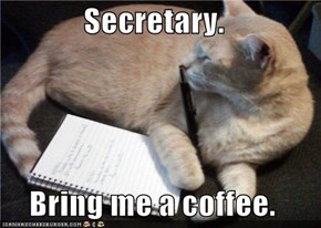 Secretary.  Bring me a coffee.