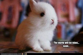 The world will be mine... soon...