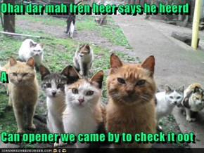 Ohai dar mah fren heer says he heerd A Can opener we came by to check it oot