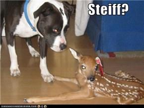 Steiff?