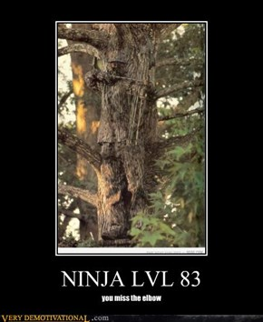 NINJA LVL 83