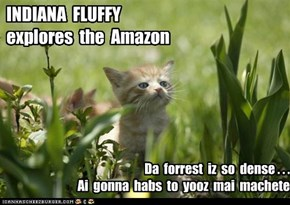 INDIANA  FLUFFY explores  the  Amazon