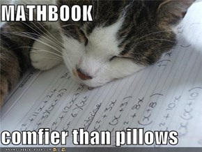 MATHBOOK  comfier than pillows