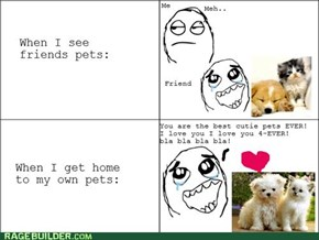 My pets rule the cutiescale!