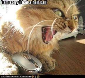 i am sorry i had a hair ball