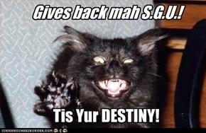 kitteh iz nawt happy dat Stargate Universe wuz cancelled