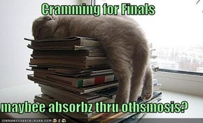 Cramming for Finals  maybee absorbz thru othsmosis?