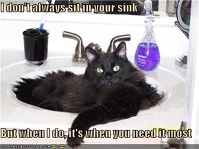 I don't always sit in your sink  But when I do, it's when you need it most