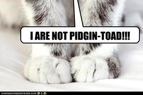 I ARE NOT PIDGIN-TOAD!!!