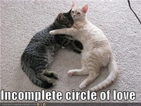 Incomplete circle of love