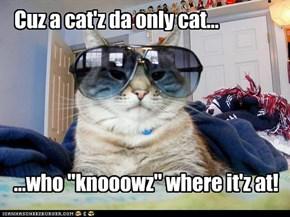 Everybuddy Wuntz To Be A Cat!