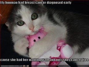 My hooman had breast cancer diagnosed early   cause she had her mammogram and now shes cancer free