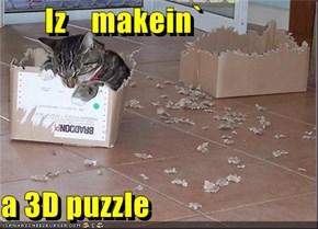 Iz    makein`  a 3D puzzle