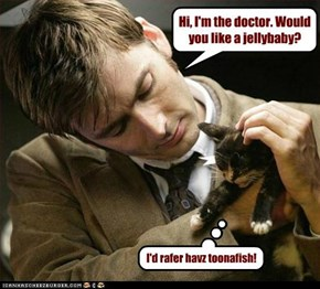 Geez Doc! Don'tcha know what kittehs like? Either way...cuteness explosion!!!