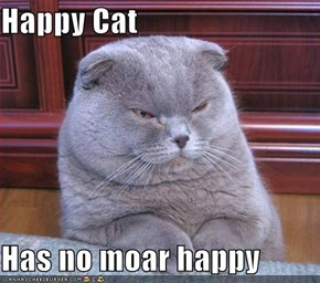 Happy Cat  Has no moar happy