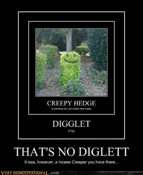 THAT'S NO DIGLETT
