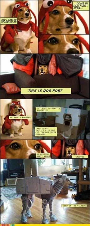 Imperial Dog Walker