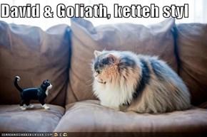 David & Goliath, ketteh styl