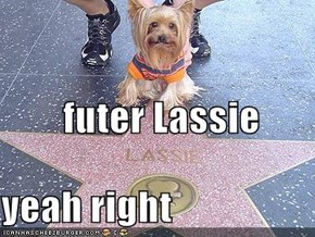 futer Lassie yeah right