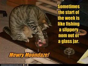 Mewry Moondaze!