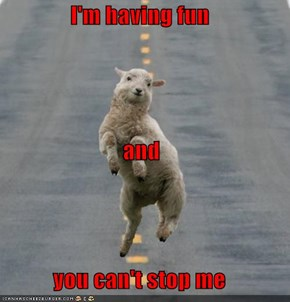 TRUST ME HAPPY SHEEP, I DON'T PLAN ON IT