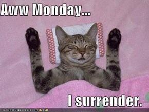 Aww Monday...  I surrender.