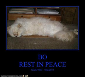 BO REST IN PEACE