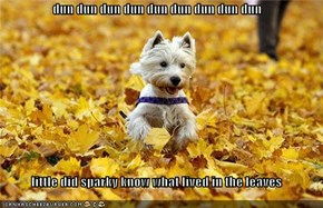 dun dun dun dun dun dun dun dun dun  little did sparky know what lived in the leaves