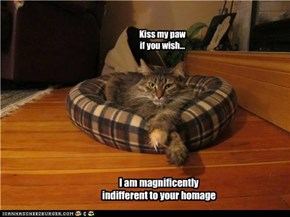 I am magnificently indifferent to your homage