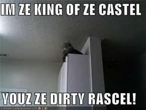 IM ZE KING OF ZE CASTEL  YOUZ ZE DIRTY RASCEL!