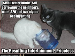 Small water bottle:  $15Borrowing the neighbor'scats:  $20 and two nightsof babysitting