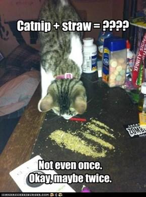 Catnip + straw = ????