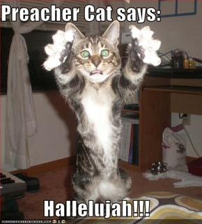 Preacher Cat says:  Hallelujah!!!