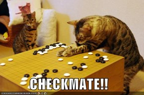 CHECKMATE!!