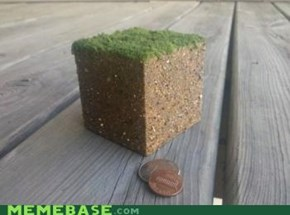 Minecraft IRL