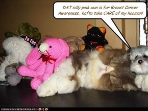 DAT silly pink wun is fur Breast Cancer Awareness.. hafta take CARE of my hooman!