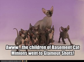 Awww....the children of Basement Cat Minions went to Glamour Shots!