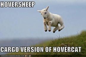 HOVERSHEEP  CARGO VERSION OF HOVERCAT