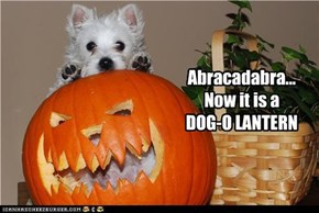 Abracadabra...Now it is aDOG-O LANTERN