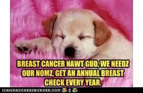 BREAST CANCER NAWT GUD, WE NEEDZ OUR NOMZ, GET AN ANNUAL BREAST CHECK EVERY YEAR.