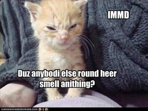 Duz anybodi else round heer smell anithing?