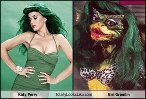 Katy Perry Totally Looks Like Girl Gremlin